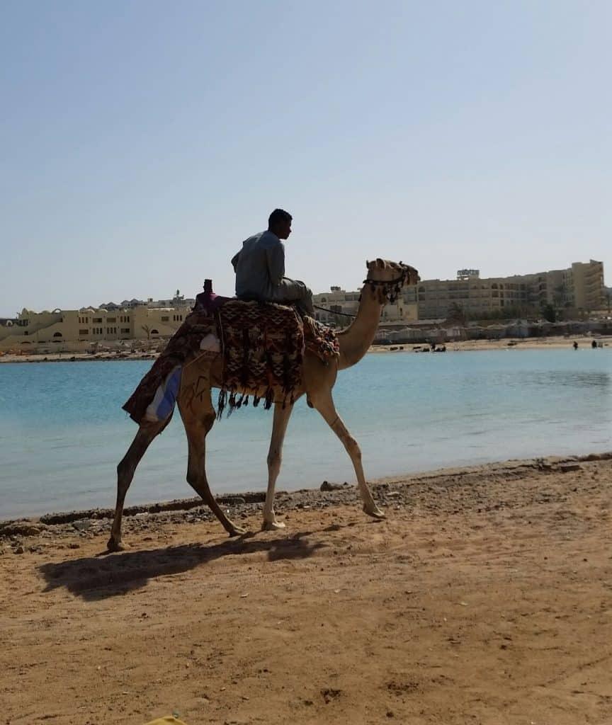 Хургада, Египет-14