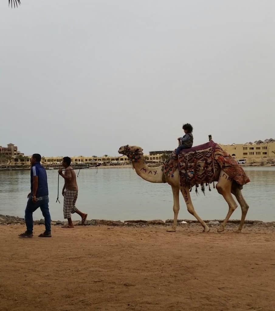Хургада, Египет-16