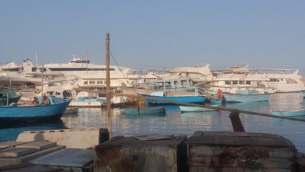 Хургада, Марина и рыбный базар-3