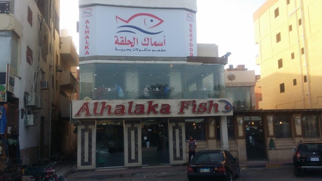 Хургада, Марина и рыбный базар-6